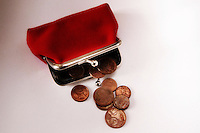 Borsellino degli spiccioli. Purse for coins...