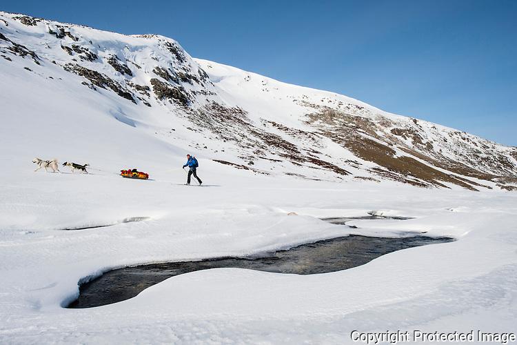 Skiløper på vei gjennom Bjørnskardet på Varangerhalvøya. ---- Skier in Bjørnskardet on Varangerhalvøya.