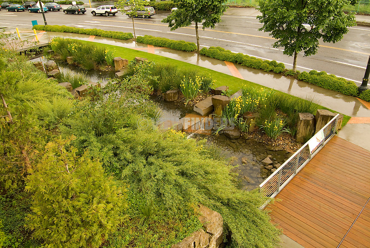 Stormwater Facility, The Rainwater Garden, Oregon Convention Center, Portland Oregon.