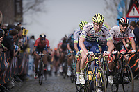 Frederik Backaert (BEL/Wanty - Gobert) up the Oude Kwaremont<br /> <br /> 103rd Ronde van Vlaanderen 2019<br /> One day race from Antwerp to Oudenaarde (BEL/270km)<br /> <br /> ©kramon