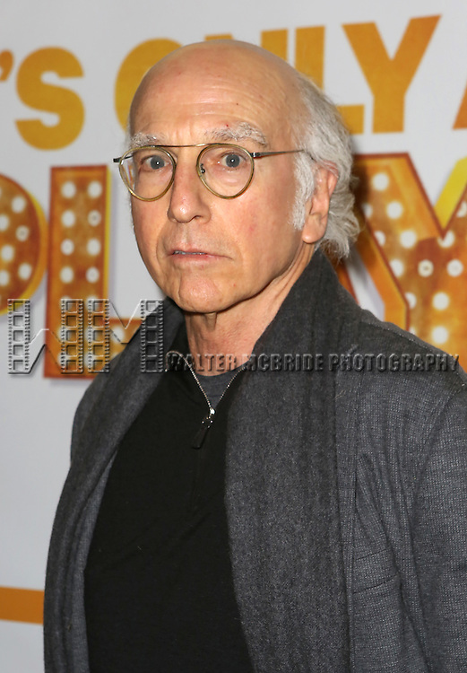 Larry David attends the Re-Opening Night of 'It's Only A Play'  at the Bernard B. Jacobs Theatre on January 23, 2014 in New York City.