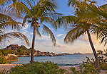 Virgin Gorda, British Virgin Islands, Caribbean <br /> Palm trees shelter the beach on Spring Bay at sunset, Spring Bay National Park