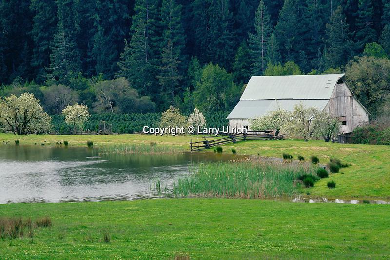 Farm<br />   in the Navarro River Valley<br /> Mendocino County<br /> California
