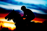 LEXINGTON, KENTUCKY - APRIL 08: Horses exercise at sunrise on the main track on Bluegrass Stakes Day at Keeneland Race Course on April 8, 2017 in Lexington, Kentucky. (Photo by Scott Serio/Eclipse Sportswire/Getty Images)