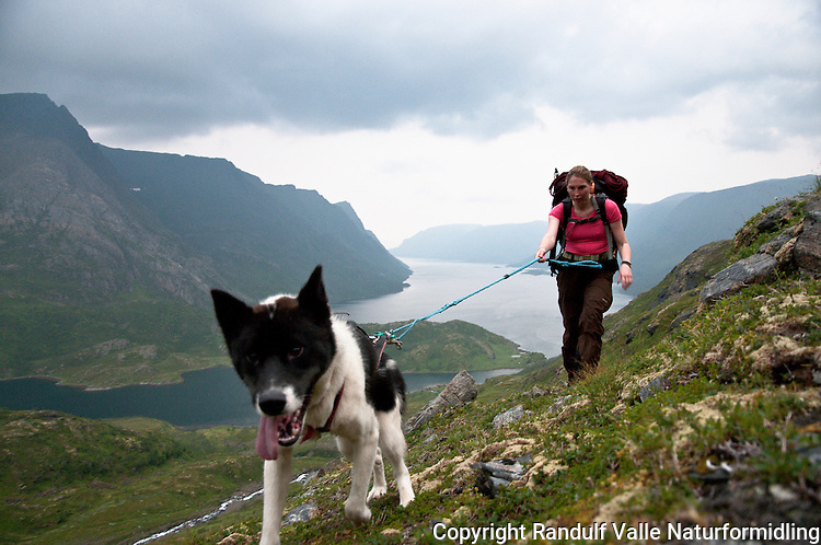 Dame med hund på vei opp bakkene fra Jøfjorden på Seiland i Finnmark. ---- Woman and dog hiking in steep terrain on the island Seiland.