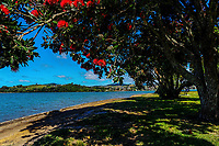 Bay Of Plenty Regional Council in Tauranga, New Zealand on Monday, 17 December 2018. Photo: Dave Lintott / lintottphoto.co.nz