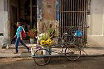 Havana, Cuba: Flower shop and delivery bikes, Old Havana