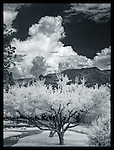 Looming Thunderstorm over Sedona