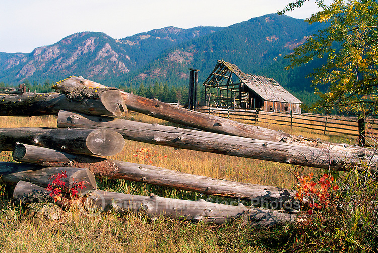 A Snake Fence and Old Barn in the Botanie Valley near Lytton, Southwestern British Columbia, Canada, in Autumn