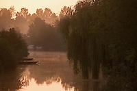 Europe/France/Poitou-Charentes/79/Deux-Sèvres/Coulon: Aube sur le Marais poitevin sur les bords de la Sèvre Niortaise