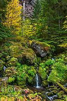Watson Falls, North Umpqua River, Umpqua National Forest, Douglas County, Oregon