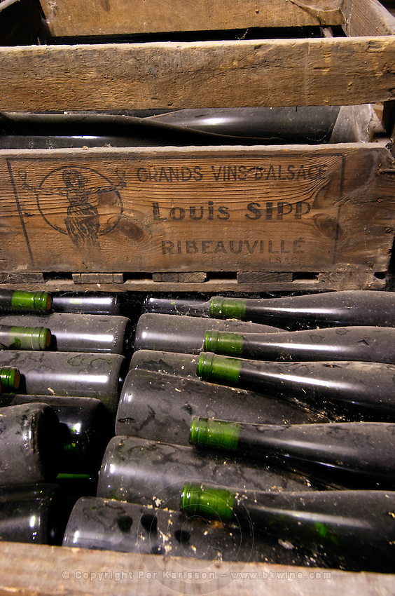 old bottles in the cellar dom. louis sipp ribeauville alsace france