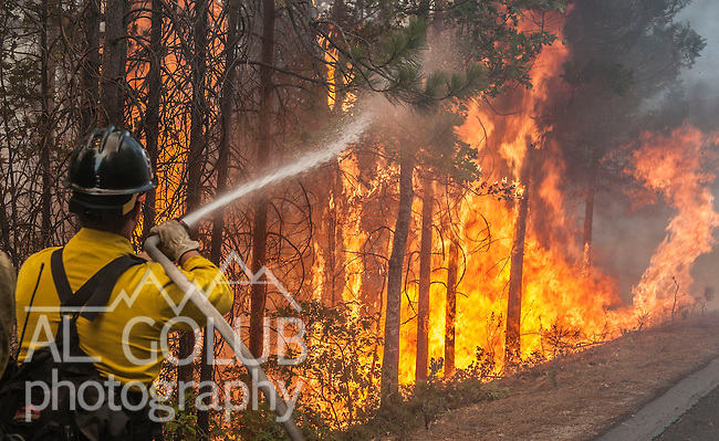Colorado firefighter sprays water to cool down spot fire on Harden Flat Road near Highway 120.