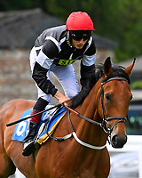 Secret Agent ridden by George Wood goes down to the start of The Sharp's Doom Bar Handicap,  during Afternoon Racing at Salisbury Racecourse on 13th June 2017