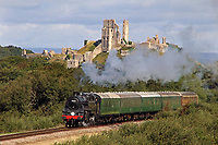 BNPS.co.uk (01202)558833<br /> Pic: AndrewPMWright/BNPS<br /> <br /> The Swanage Railway in Dorset is desperate to find new drivers for its popular locomotives.<br /> <br /> Growth Industry - Britain's enduring love affair with steam trains has led to a critical shortage of drivers, 56 years after the infamous Beeching Axe was supposed to have fallen.<br /> <br /> More steam train's are running today than at anytime since Dr Beechings drastic cut in 1963 - with over 150 steam heritage railways and museums attracting 13 million visitors a year.<br /> <br /> One of the most popular heritage railways in the country has put out an SOS for steam drivers - as so many of its stalwarts are retiring.<br /> <br /> Swanage Railway in Dorset has 42 steam drivers on their books, but the majority are in their 60s or older and likely to step down in the coming years.<br /> <br /> They need to train up to 40 drivers over the next five years to replace them and meet their expanding service, which attracts over 200,000 visitors each year.<br /> <br /> To fill the void, a group of enthuisastic young volunteers are being taught the skill, a process which can take up to a decade.<br /> <br /> The Heritage Railway Association, which oversees them, says some of their railways have a 'more pressing need for new blood'.