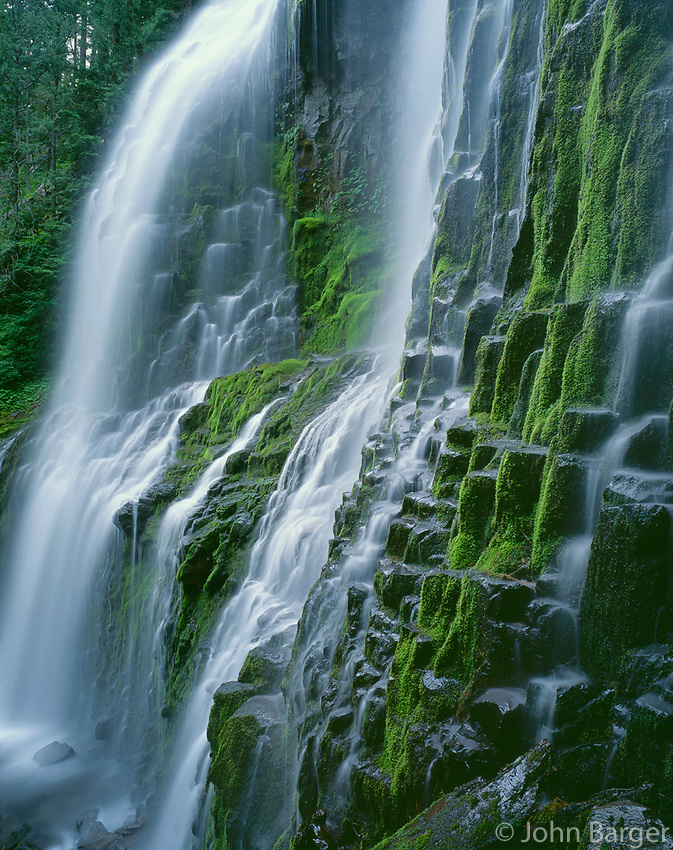 USA, Oregon, Willamette National Forest, Three Sisters Wilderness, Lower Proxy Falls displays multiple cascades as it descends a mossy cliff of columnar basalt.
