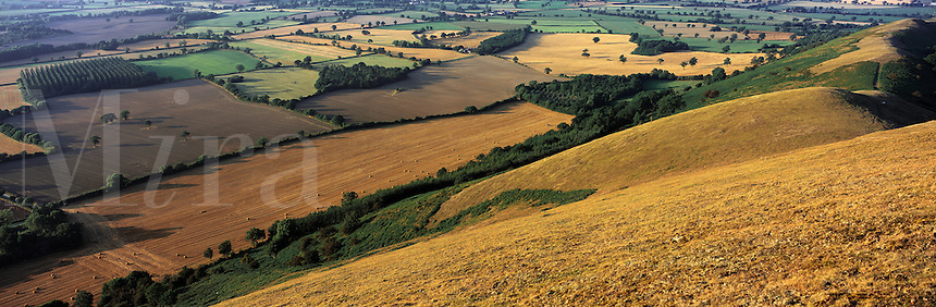 © David Paterson.The north Shropshire plain seen from The Lawley, near Church Stretton, Shropshire, England...Keywords: fields, patchwork, hedges, woods, copse, thicket, palin, plateau, farming, agriculture, rural, pastoral, Shropshire, England