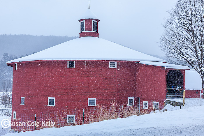 Fresh snow on the red round barn in Barnet, VT