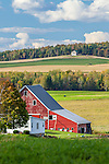 Potato farm in Hodgton, Maine, USA
