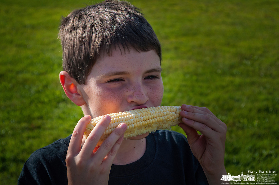 Freckled face young boy eats raw corn bought at a local farmers market.