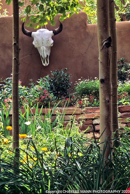 The gardens of Santa Fe,New Mexico, offer a constant suppply of delightful surprises and artful delights. Interior designer Deena Perry put her hand to the  courtyard of the Vandenbark garden and made some wooden birdhouses do a novel trick on a sponged purple wall.
