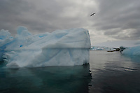 Lone Flyer - Fantastical ice at Planeau Island