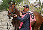 LEXINGTON, KY - April 14, 2018.  #8 Lady Aurelia in the paddock before finishing 2nd in the Giant's Causeway (Listed) $100,000 at Keeneland Race Course.  Lexington, Kentucky. (Photo by Candice Chavez/Eclipse Sportswire/Getty Images)