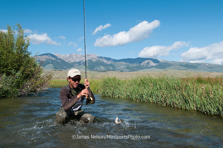 Andy Nelson, 13, brings a rainbow trout to hand while fly fishing on Birch Creek, Idaho.