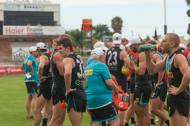 Heat training , Port Power at Alberton Oval. Photo: Nick Clayton