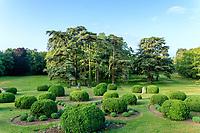 France, Indre-et-Loire (37), Montlouis-sur-Loire, jardins du château de la Bourdaisière, boules de buis et groupe de cèdres du Liban