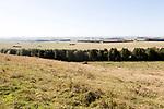 View of Salisbury Plain west from Sidbury Camp, Haxton Down, near Everleigh, Wiltshire, England, UK