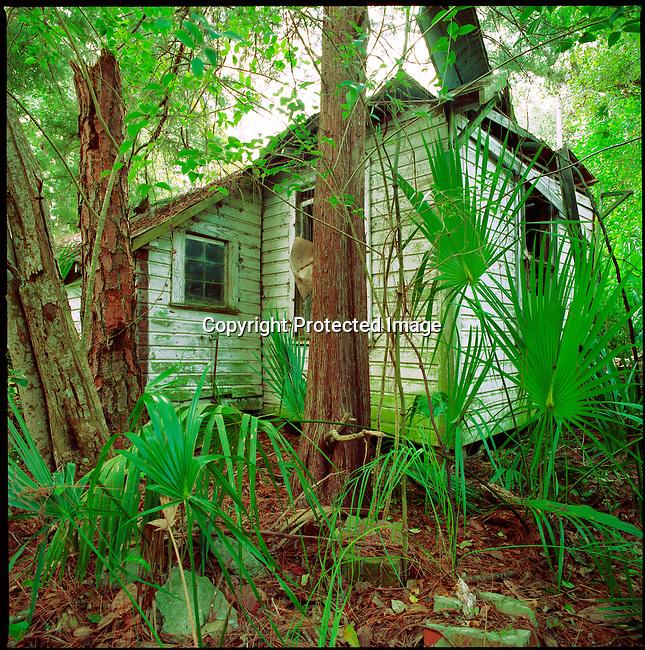 Cabin Rentals, Rte. 1 Florida.