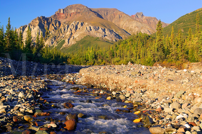 White Mountain and a creek along the Nabesna Road, Wrangell-St Elias National Park, Alaska