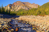 White Mountain and a creek along the Nabesna Road, Wrangell-St Elias National Park, Alaska