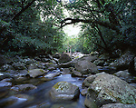 Mossman River Cascade, Daintree National Park, Queensland