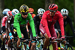 Green Jersey leader Wout Van Aert (BEL) Team Jumbo-Visma and Nils Politt (GER) team Katusha Alpecin chat during Stage 6 of the Criterium du Dauphine 2019, running 229km from Saint-Vulbas - Plaine de l'Ain to Saint-Michel-de-Maurienne, France. 14th June 2019.<br /> Picture: ASO/Alex Broadway | Cyclefile<br /> All photos usage must carry mandatory copyright credit (© Cyclefile | ASO/Alex Broadway)