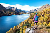 Hiking above the Silsersee during fall colors in the Engadin, near Maloja, Switzerland