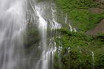 Waterfall in Olympic National Park, Washington, WA, USA