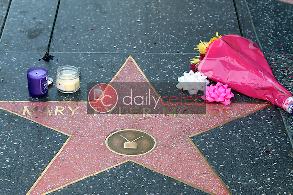 Mary Tyler Moore<br /> Memorial Wreath Laid at Hollywood Walk of Fame, Hollywood, CA 01-25-17<br /> David Edwards/DailyCeleb.com 818-249-4998