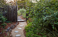 Stepping stone path walkway through rustic wooden fence and gate from sideyard to front garden with California native plants, Heath-Delaney garden