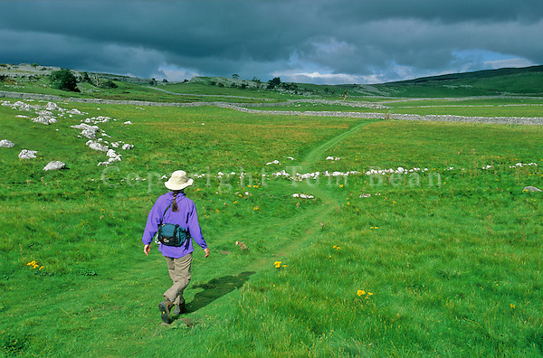 Walker follows Dales Way footpath amid limestone, karst topography, Yorkshire Dales National Park near Grassington, Yorkshire, England, AGPix_0351.