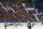 Stockholm 2013-12-07 Ishockey Elitserien AIK - Skellefte&aring; AIK :  <br /> L&auml;ktarsektioner fyllda med Skellefte&aring; AIK SAIK supportrar under matchen<br /> (Foto: Kenta J&ouml;nsson) Nyckelord:  AIK Skellefte&aring; SAIK supporter fans publik supporters