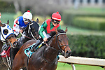 HOT SPRINGS, AR - FEBRUARY 19:#9, Rocking the Boat with jockey Fernando De La Cruz leading going into first turn in the Razorback Handicap at Oaklawn Park on February 19, 2018 in Hot Springs, Arkansas. (Photo by Ted McClenning/Eclipse Sportswire/Getty Images)
