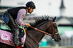 LOUISVILLE, KY - MAY 03: Midnight Bisou, trained by Bill Spawr, exercises in preparation for the Kentucky Oaks at Churchill Downs on May 3, 2018 in Louisville, Kentucky. (Photo by Alex Evers/Eclipse Sportswire/Getty Images)