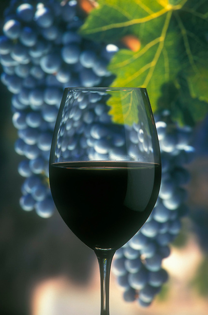 Cabernet in the glass