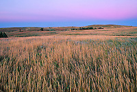 Theodore Roosevelt National Park, ND<br /> Grasses under twilight sky Little Missouri National Grasslands