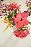 BELIZE, Punta Gorda, Toledo, a beautiful floral arrangement located inside of Belcampo Belize Lodge and Jungle Farm