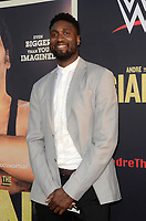"""LOS ANGELES - FEB 29:  Roy Hibbert at the """"Andre The Giant"""" HBO Premiere at the Cinerama Dome on February 29, 2018 in Los Angeles, CA"""