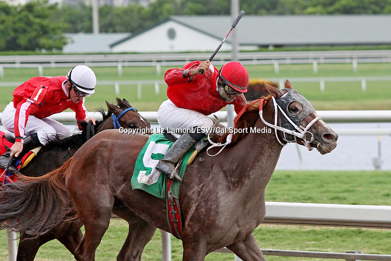 September 06, 2014:  Scenes from Gulfstream Park.  #5 Sweet Irish Rose (KY) with jockey Pedro Monterrey Jr on board wins R6 at Gulfstream Park in Hallandale Beach FL. Liz Lamont/ESW/CSM