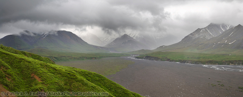 Thorofare river drainage near Eeilson bluffs, Denali National Park, Alaska